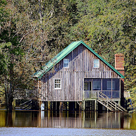 Park Anywhere by Kevin Hill - Buildings & Architecture Homes ( flooding, cabin, reflection, waterscape, flood, trees, leaves )