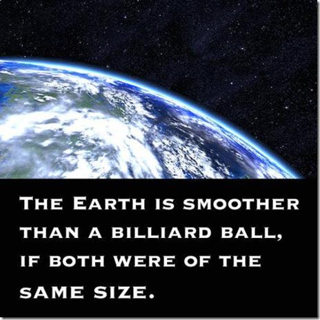 strange-facts-true-044