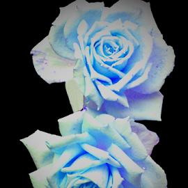 by Darrell Tenpenny - Digital Art Things