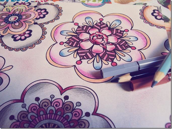 colorindo8