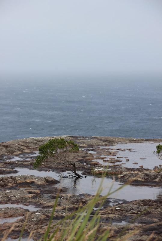 Wishful Thinking - Erowal Bay