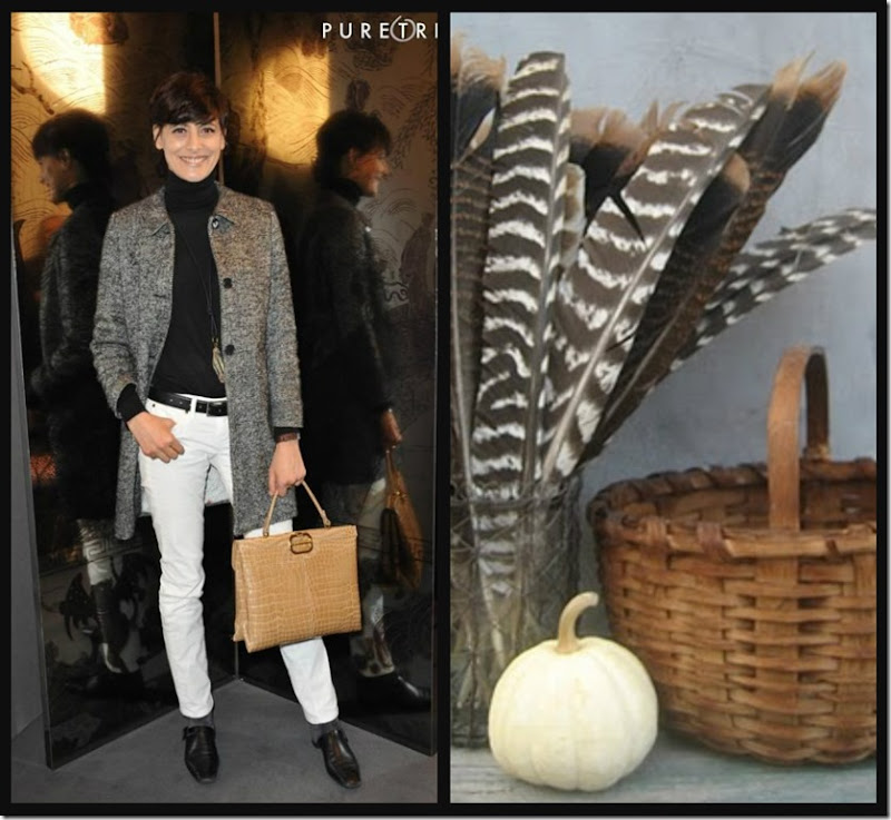 Ribbet collage Fall pairings 1