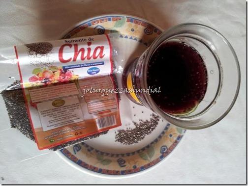 CHIA 1