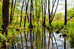 Kleiner Klobichsee