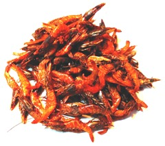 red-dry-prawns-shrimps-small (3)