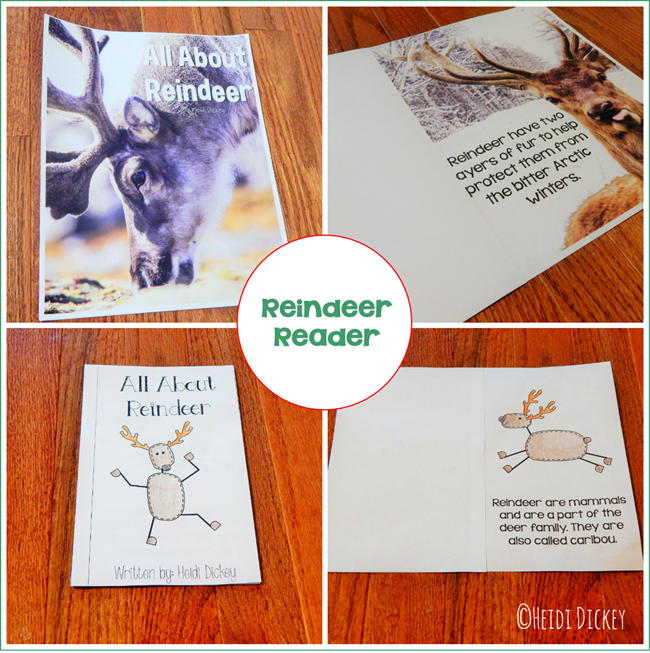 Reindeer Thematic Reader