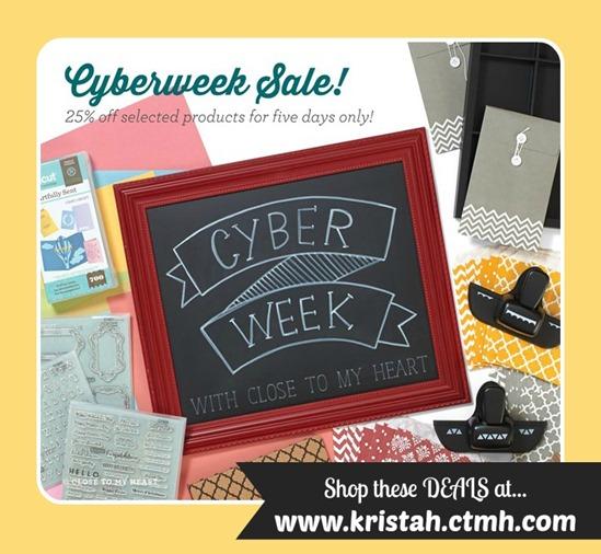 2015-11-cc-my info_cyberweek