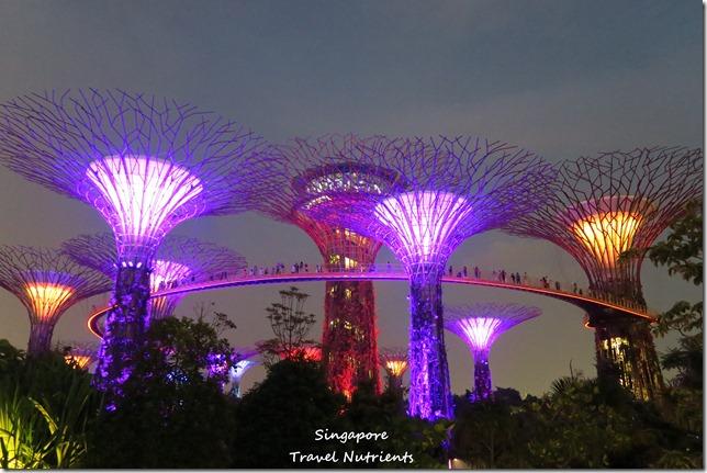 新加坡超級樹燈光秀 (25)