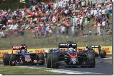 Fernando Alonso precede una Toro Rosso