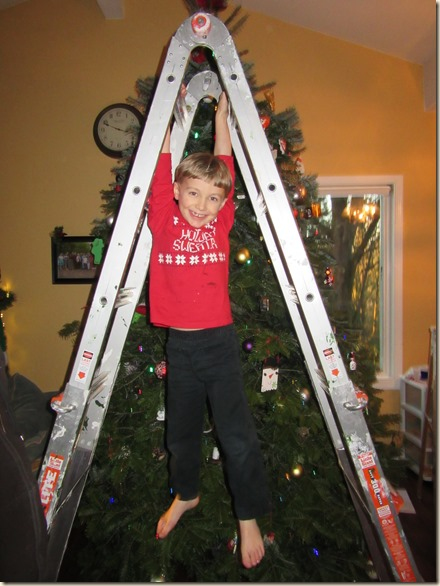 11-27 Christmas tree 11