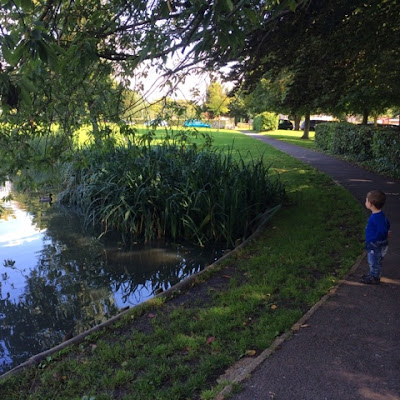 Baby Boy observing a beautiful pond with ducks on it