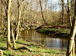 Rock Creek Park, the creek and bike path, near my house.