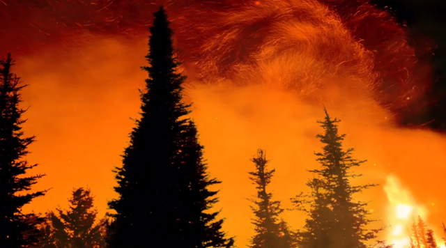 Screenshot from the Yale e360 video, 'Unacceptable Risk: Firefighters on the Front Lines of Climate Change', showing sparks from a forest fire in Colorado. Photo: The Story Group