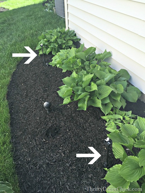 landscaping light placement