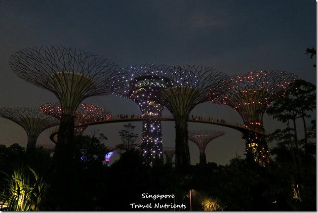 新加坡超級樹燈光秀 (18)
