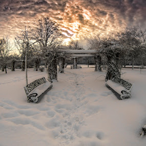 winter sunset by Razvan Teodoreanu - Landscapes Sunsets & Sunrises