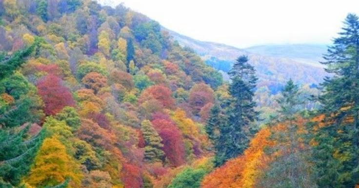 Pitlochry , Scotland