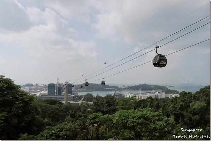 新加坡花柏山 (18)