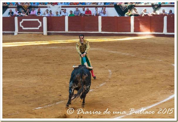 Toros Feria 2015-9855