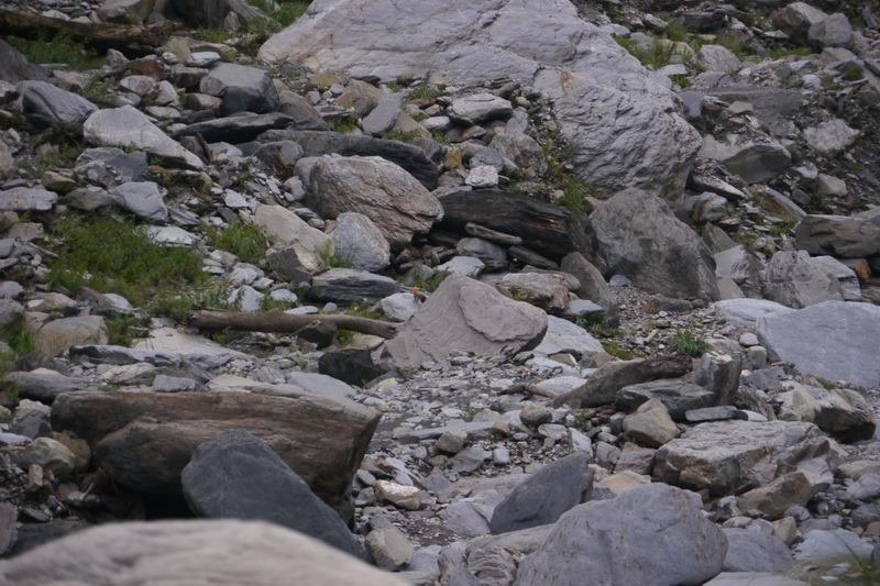 2014_0101-0105 萬山神石、萬山岩雕順訪萬頭蘭山_0896