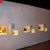 Houston Museum of Natural Science - 116_2689.JPG