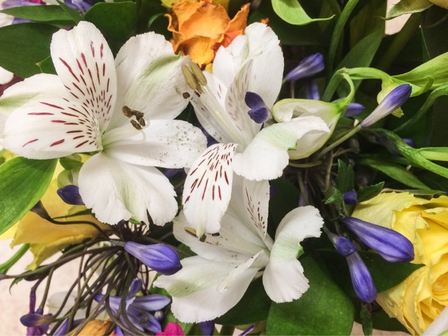 appleyard-flowers-cheap-luxury-flower-delivery-discount-lifestyle-blog