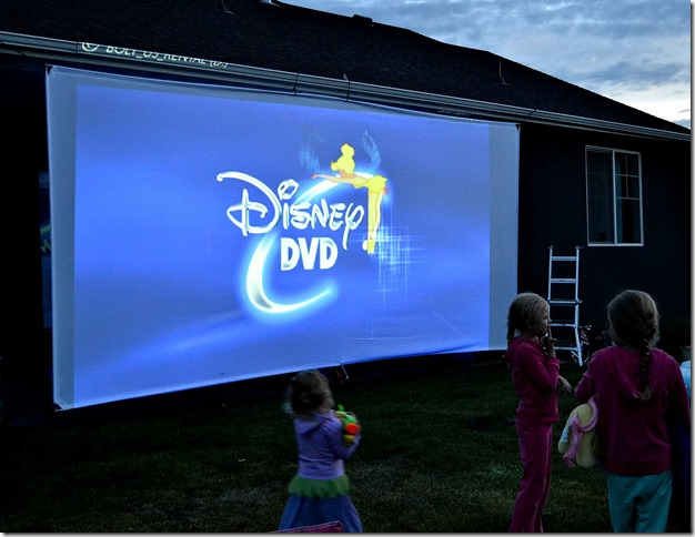 DIY-Massive-Movie-Theater-Screen