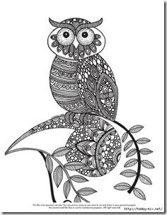 dibujos de buhod en blanco y negro (2)