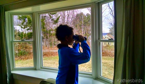 4-20-15 Teaching the grandson to bird