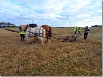 Ploughing Bill Fernie 3
