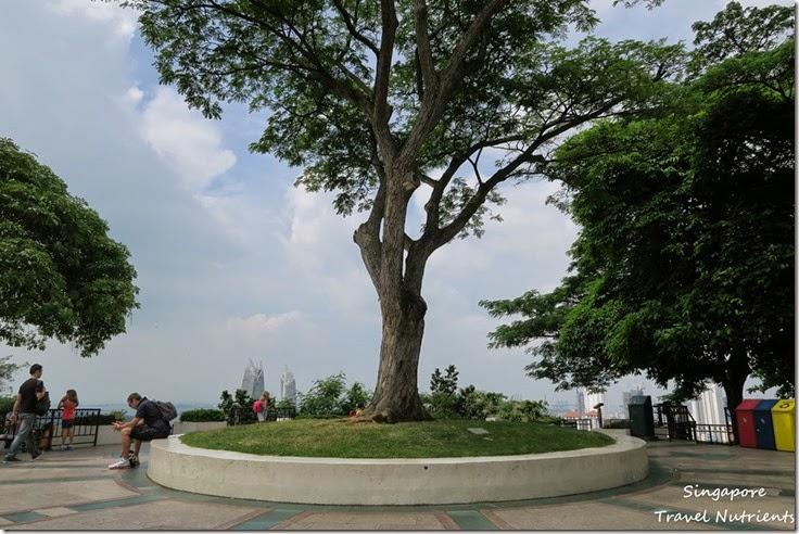 新加坡花柏山 (32)