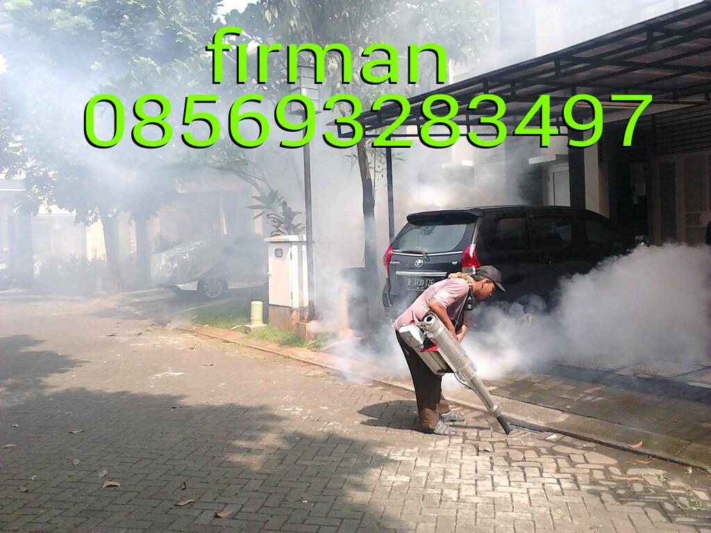 Fogging Nyamuk Mustang Obat Firman 081290327639 085693283497