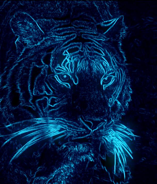 фото тигра на заставку телефона № 15066 бесплатно