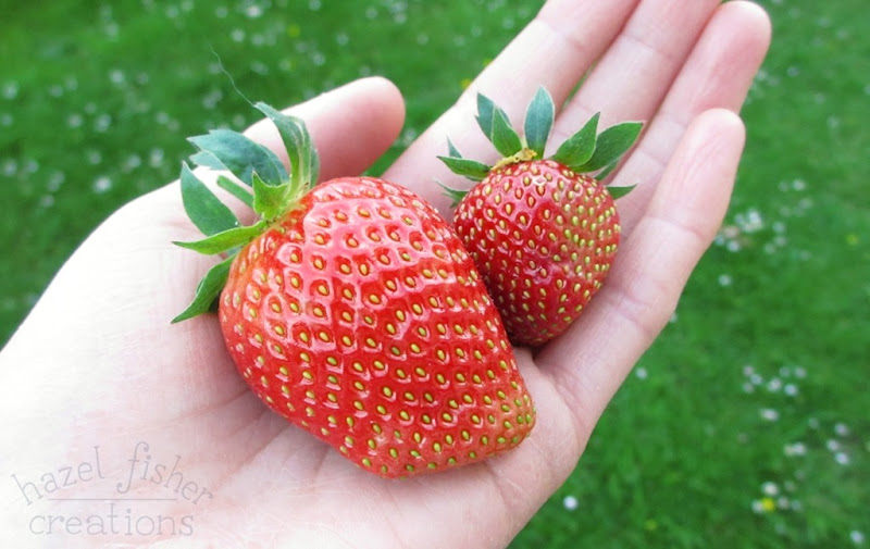 2015 June 30 monthly review strawberries hazelfishercreations