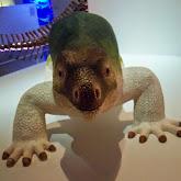 Houston Museum of Natural Science - 116_2696.JPG