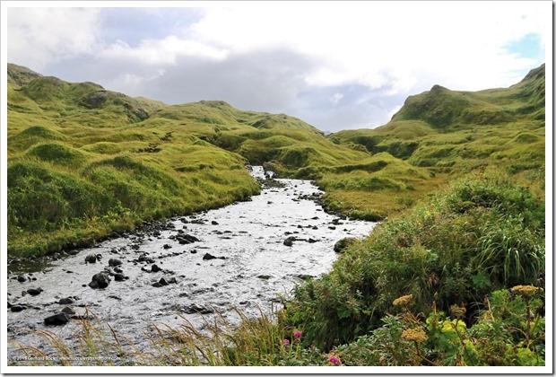 150908_Adak_FingerBay_top_of_creek2_WM