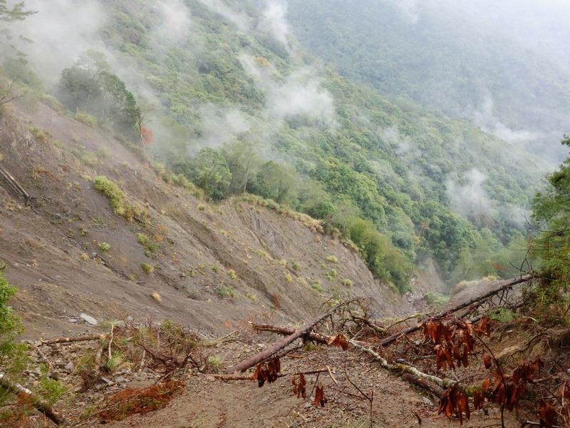 2013_1126-1129 鹿林山-1_135