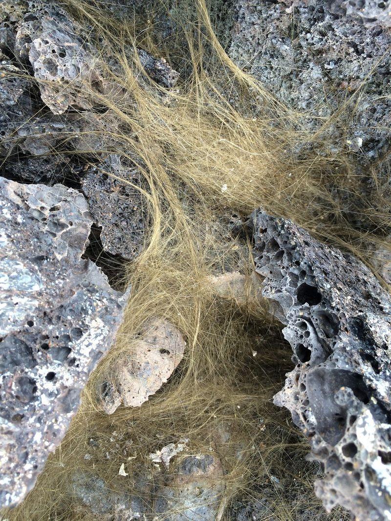 peles-hair-3