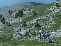 Auf dem Scheitel des Col de la Cayolle (2326 m). Eselwandern/Eseltrekking.