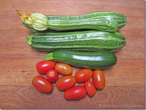 squash&tomatoes