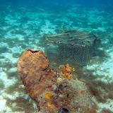 UnderwaterGrandAnseDArlet