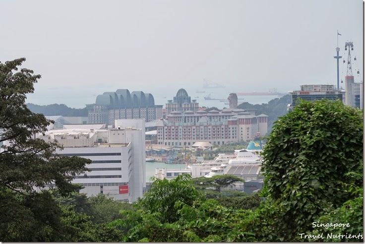 新加坡花柏山 (16)