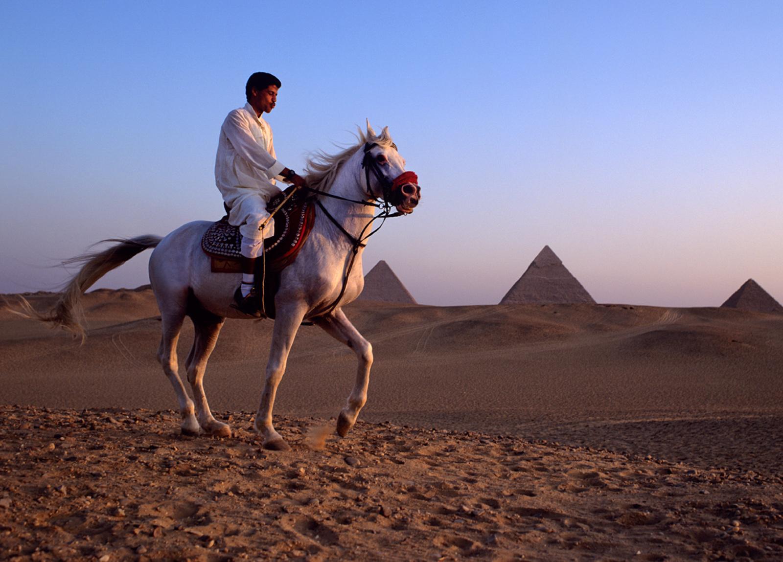 Egypt MediumFormat 82