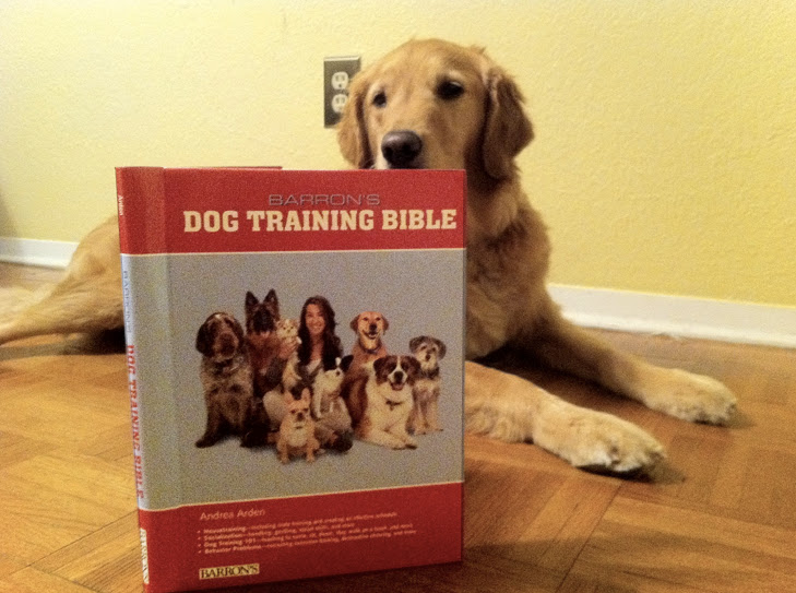 my new puppy essay