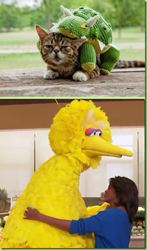 lilbub kermit mo big bird