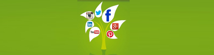 Thumbnail image for Why Organic Social Media Content Matters in SEO