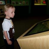 Houston Museum of Natural Science - 116_2847.JPG