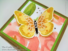 Watercolor Wings & Exploding Box Cards!