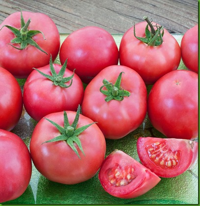 Porter Tomato Bonnie 2015 Tag - Full image - No tag crop