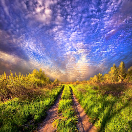The Love of Life's Journey by Phil Koch - Transportation Roads ( vertical, farmland, travel, yellow, leaves, love, sky, fi  eld, tree, nature, weather, perspective, dirt, light, orange, twilight, art, agriculture, horizon, wis  consin, portrait, environment, dawn, serene, trees, lines, inspirational, natural light, wisconsin, ray, road, landscape, phil koch, spring, sun, photography, farm, life, path, horizons, inspired, clouds, office, park, scenic, morning, shadows, red, blue, sunset, amber, peace, meadow, summer, beam, earth, sunrise, garden )